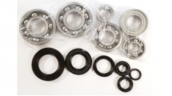 1978-1980 CR250R Engine Bearing and Oil Seal Kit