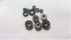 CR125 | MT125 | MT125R | MR175 Complete Bearing and Seal Kit