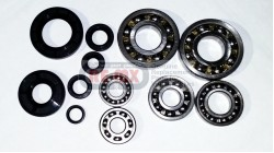 75-76 CR250 | MT250 Complete Bearing and Seal Kit