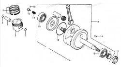 XR75 | XR80 | XL75 | XL80S Honda Timing Gear Sprocket 14T