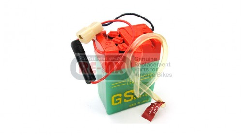CT70 | CT70H | SL70 | Z50A 6 volt Red Top Battery